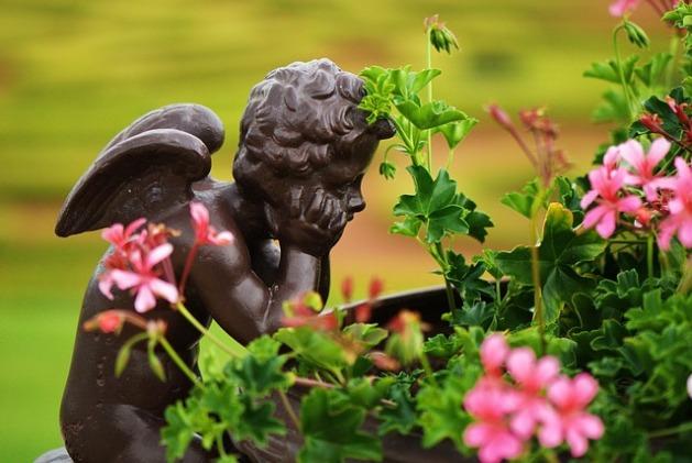Ángel y flores. Poesía